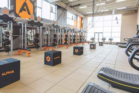 Alpha class workout area
