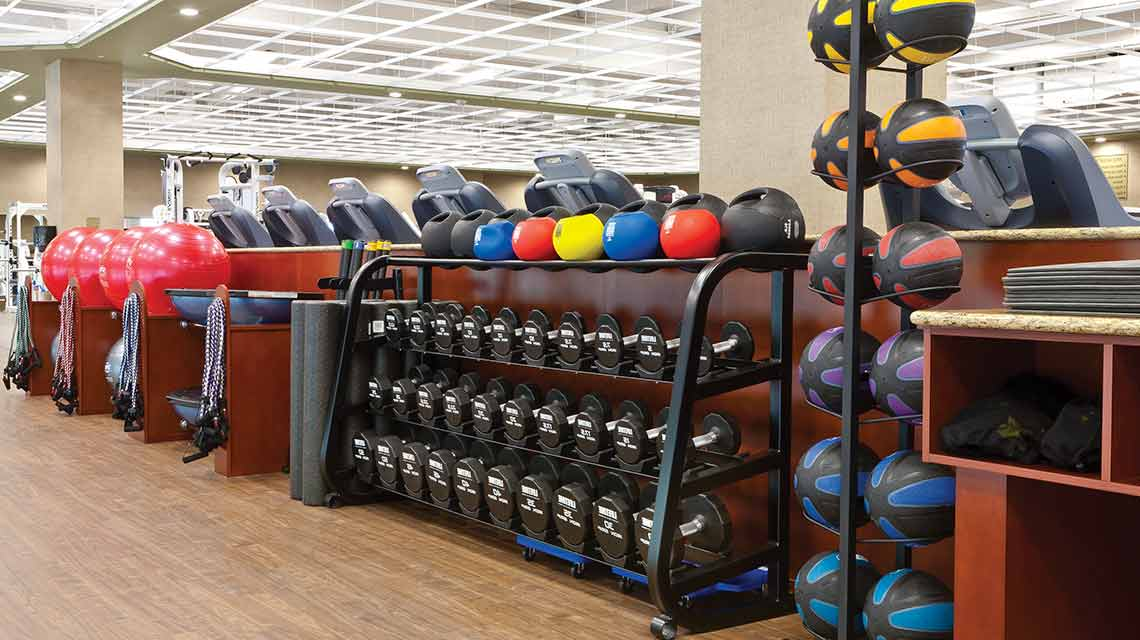 image of Free Weights and Equipment