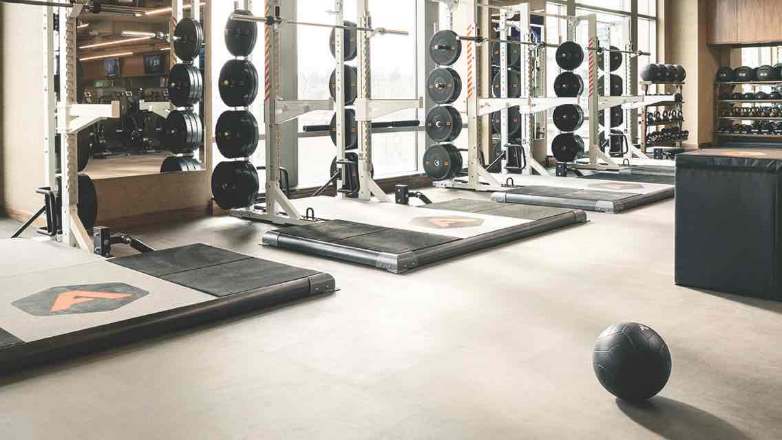 An Alpha training area equipped with weightlifting platforms, free weights and a medicine ball standing by