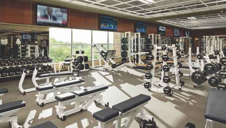A sunlit fitness area filled with a large assortment of weight benches and weight racks