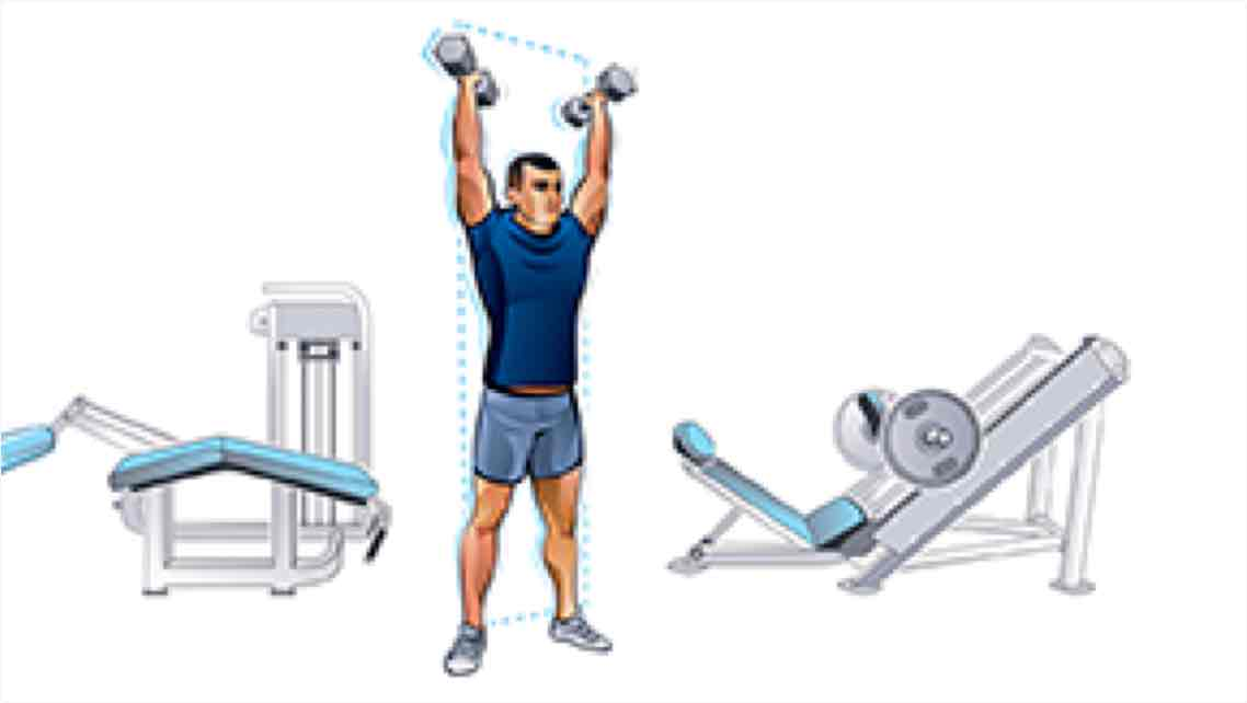 An illustration of a man lifting two dumbbells over his head surrounded by two cable weight machines