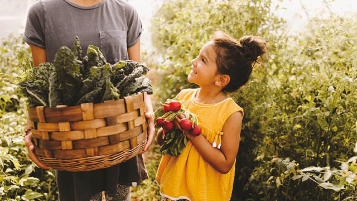 A woman holding a wooden basket full of kale and a child holding a handful of freshly picked radishes stand together in a garden